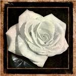 Papel Decoupage Arte Francesa Rosa II AFQ-359 - Litoarte