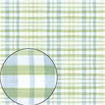 Papel Scrapbook Folha Simples Xadrez Azul e Verde LSC-213 - Litocart