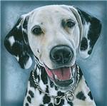 Papel Transfer 30x30 Cachorro Dalmata PT30-025 - Litoarte