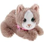 Pelúcia Furreal Friends Newborns Meow - Hasbro