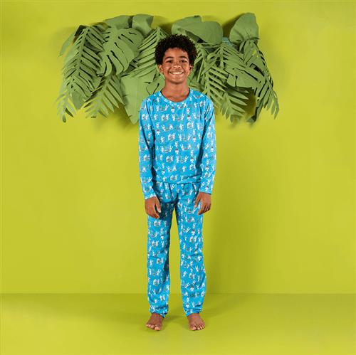 Pijama Blusa M/l e Calça Pij.blusa M/l e Calca Avulso Azul/g