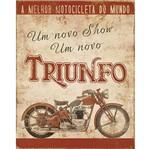 Placa Decorativa Litoarte Dhpm-231 24x19cm Moto Triumph