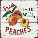 Placa Decorativa Litocart Lpqc-052 25x25cm Peaches