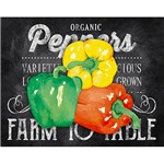 Placa Decorativa Organic Peppers 24x19cm DHPM-131- Litoarte