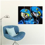 Placa Painel Decorativa em MDF Foto Arara-azul Kit 4 Placas