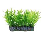 Planta Artificial Soma Tapete Alternanthera Verde 6cm