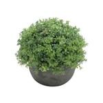 Plantas Artificiais Trevino Long Leaves 13,5 Cm Verde