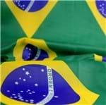 Poliéster Tafetá Est. Bandeira Bandeira 0.37x0.27
