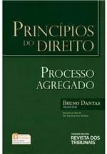 Princípios do Direito - Processo Agregado - 1ª Edição