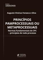 Princípios Pamprocessuais ou Metaprocessuais (2019)