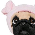 Pug Porquinho