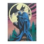 Quadro Decorativo Colorido Batman e Bat Sinal 30x40cm Urban