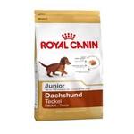 Ração Royal Canin Dachshund Junior para Cães Filhotes - 2,5 Kg