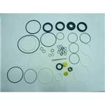Reparo Caixa Direcao Hidraulica Mb Mercedes Benz L1313/1513/