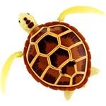 Robô Turtle Marrom - DTC