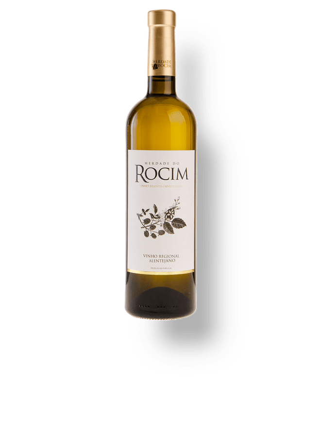 Rocim Branco 2017