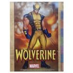 Separadores para Fichário Universitários Grafons - Wolverine