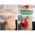 Simulador para Treino de Injeção Intramuscular Glúteo com Dispositivo de Advertência Anatomic - Tgd-4009-s