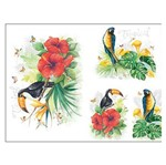 Slim Paper Decoupage Litoarte 47,3x33,8 SPL-006 Tropical Tucano e Arara