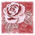 Stencil Litoarte 14x14 STAL-001 Rosa