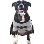 Super Pet - Batdog