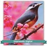 Tecido Estampado para Patchwork - Coleção Pássaros Cor 01 (0,60x1,40)