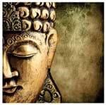 Tecido Quadrado Digital 49 X 49cm - Buda - 8108