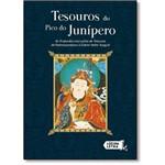 Tesouros do Pico do Junípero: as Profundas Instruções de Tesouros de Padmasambhava à Dakini Yeshe Ts