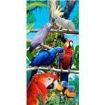 Toalha de Praia 100% Algodão 76x152cm Buettner Estampa Forest Birds
