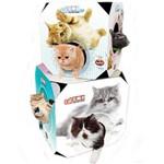 Tunel Gato Cat Box Grande