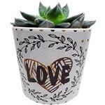 Vaso de Cerâmica Branco Flowers 40386 Urban