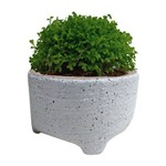 Vaso de Cerâmica Branco Sandy Médio Urban