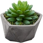 Vaso de Cimento com Cacto I de Plástico 3605 Lyor
