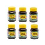 Verniz Vitral 37ml Pct 6 Un. Acrilex - Verde Veronese